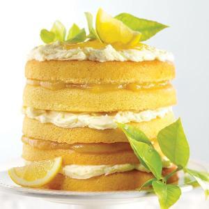 Citrus-Burst-Cake-large