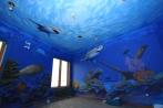 Photo courtesy of www.interiorsbystudiom.com